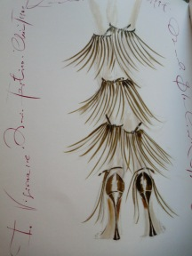 Manolo feathers