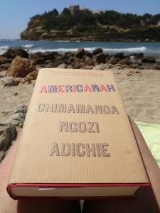 Americanah (2)