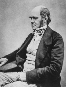 Charles Darwin, Author of 'Origin of the Species' Source: wikipedia