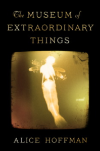Museum of Extraordinary Things