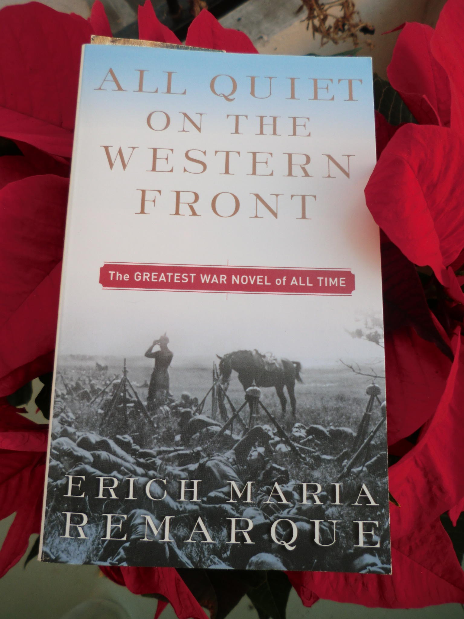 a comparative analysis of all quiet on the western front and johnny got his gun by erich maria remar Not as melodramatic as johnny got his gun nor even all quiet on the to all quiet on the western front novel based on his world war i experiences fear.