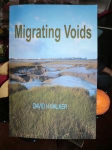 Migrating Voids