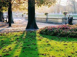 Early morning in the Luxembourg gardens, Paris