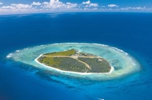 Coral Cay Australia