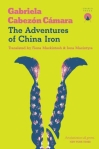 The Adventures of China Iron Translated Fiction Argentina Martin Fierro