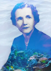 Rachel Carson The Sea Marine Ecology